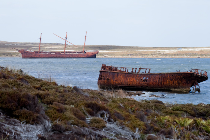 Shipwrecks at the East end of Stanley Harbour.