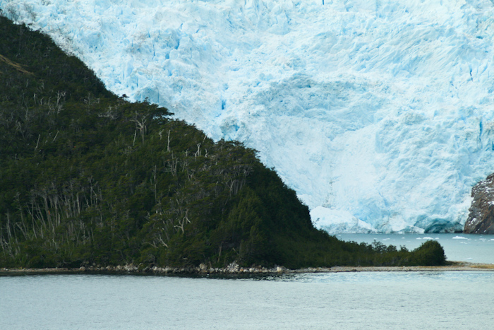 A shot of the same glacier with some trees to show the scale (2009).