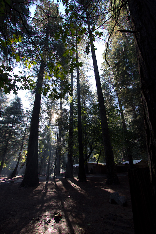 The view from my cabin/tent on Friday morning. The day started with fine weather which was good for my planned walk up to Vernal Falls. But bad for having the the entire path to myself for the third day in a row.