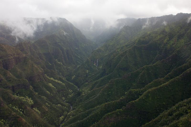 Hawaii on the Zaandam: I didn't see any dinosaurs.