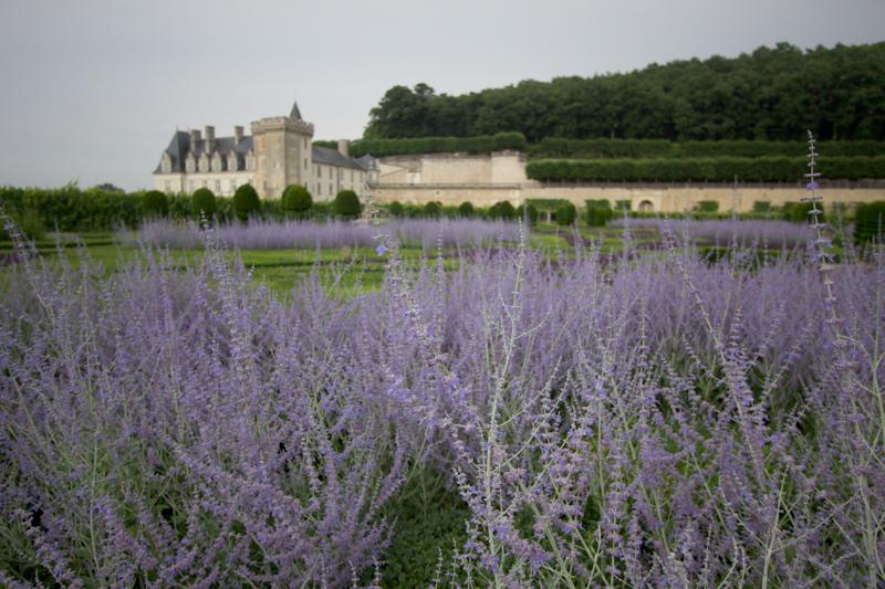Luke and Juliane Summer Tour part 2 - Castles in the Loire Valley, Dune de Pyla and Condom: Villandry.