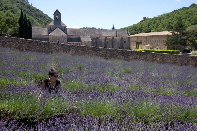 Luke and Juliane Summer Tour part 3 - Pont du Gard, Avignon, Arles, Senanque Abbey, Gordes: Senanque Abbey.