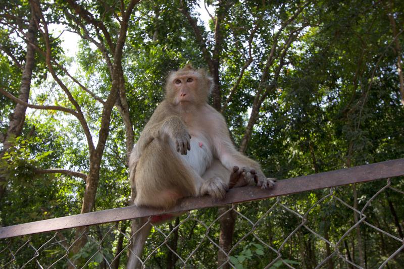 Asia Trip January 2014: Sihanoukville, Cambodia.