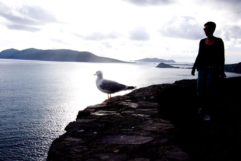 Ireland non-EJC Summer Photos: Dingle Peninsula