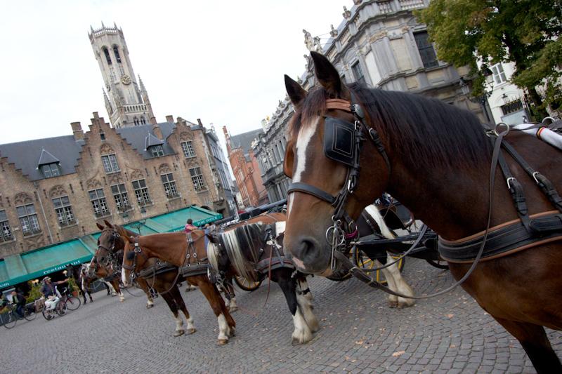 September Cruise on the Prinsendam: Bruges, Belgium.