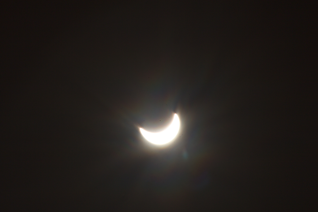 99 Random Photos I Forgot to Share Since October 2014: Solar Eclipse Day.