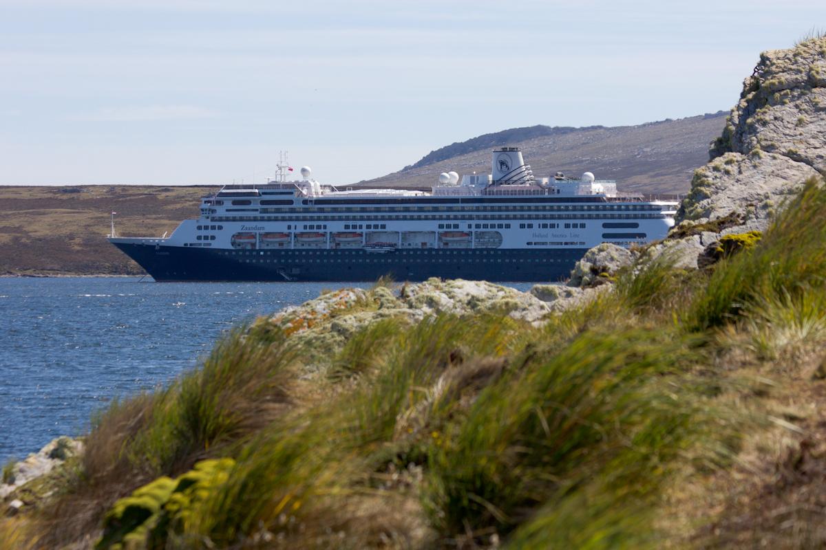 January 2016 Antarctica and Falklands: Port Stanley, Falklands