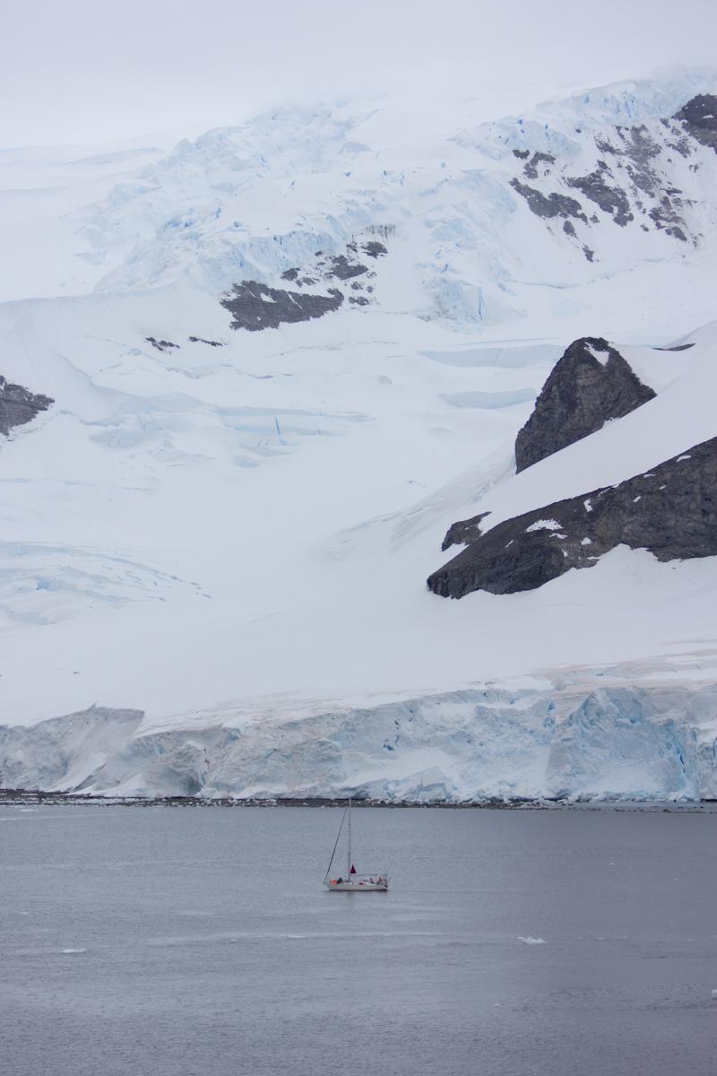 January 2016 Antarctica and Falklands: Antarctica